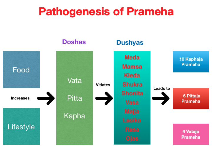 Pathogenesis of Prameha