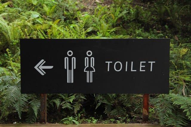 Excess urination